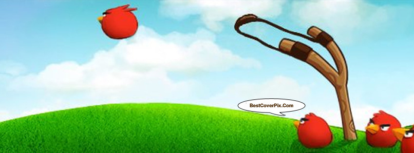 Angry Bird Game Covers for Facebook Timeline
