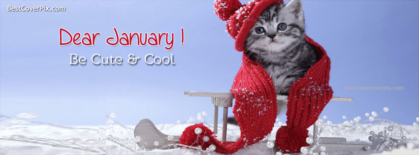 Dear January ! Snowfall Timeline Cover Photo for Facebook