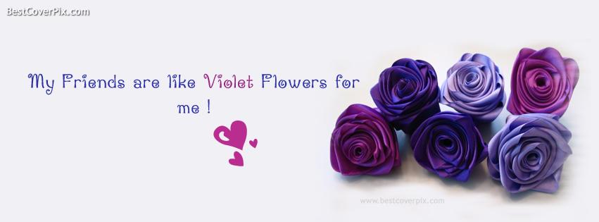 violetfrends