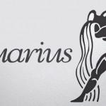 Zodiac Aquarius Facebook Covers