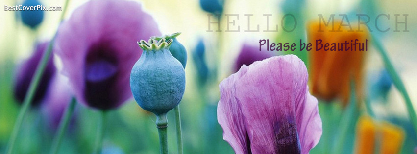 Hello March Facebook Profile Cover Photo