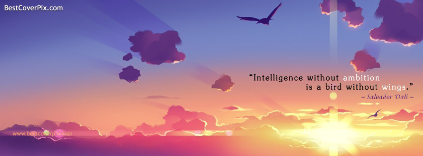 intelligent facebook cover
