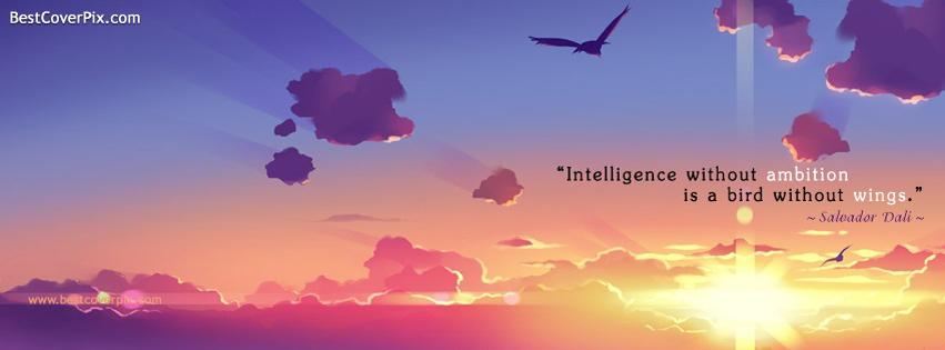 intelligent facebook cover