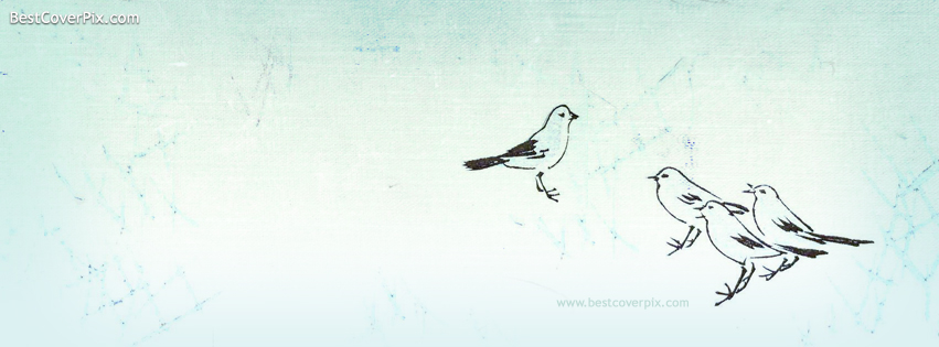 Birds Sketch Elegent Fb Covers