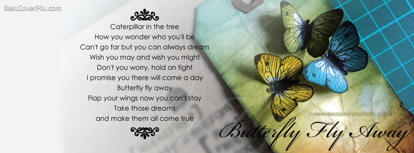 Butterfly Fly Away Beautiful Poem Fb Cover Pic on Funny Happy Quotes