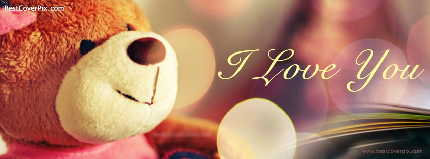 I love You Best Teddy Cover for valentine day special
