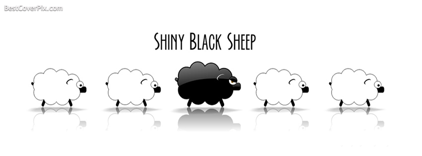 Shiny Black and White Sheeps Facebook Cover