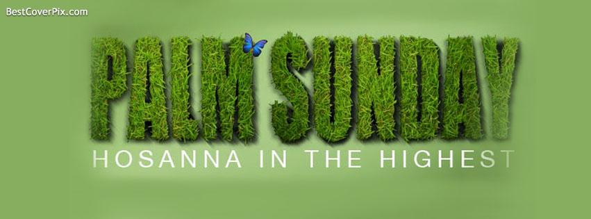 Palm Sunday Facebook Cover photo