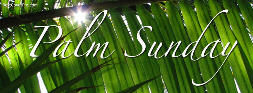 Palm Sunday Facebook Cover Photo