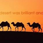 sun set desert photography FB cover