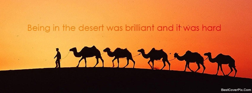 sun set desert photography FB cover
