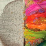 brain fb cover photo