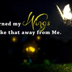 wings facebook cover photo