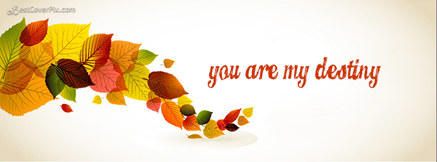 You are my Destiny Facebook Cool Dry Leaves Photo Cover