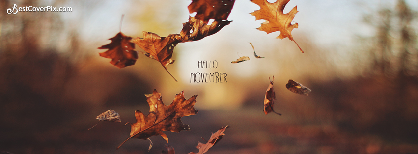 Hello Dear November Facebook Covers – Autumn Pictures